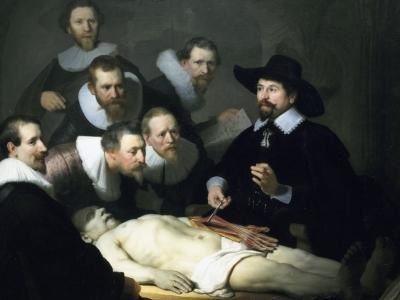 Corso di dissezione anatomica a Parigi: dopo l'esperienza intervista al Dott. Palazzolo, Direttore didattico di Accademia Osteopatia